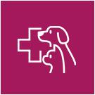 Animal Visite - Gesundheitsvorsorge