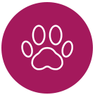 Animal Visite - Chronische Erkrankungen