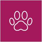 Animal Visite - Kurs Bachblütenberater - Hund, Katze, Pferd & Co.