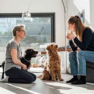 Online-Beratung - Sonja Tschöpe - TIERHEILPRAKTIKERIN | TIERERNÄHRUNGSBERATERIN