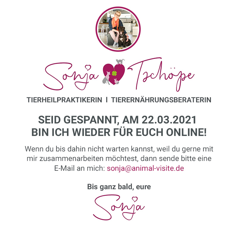 Animal Visite - Sonja Tschöpe - Tierheilpraktikerin - Online-Beratung